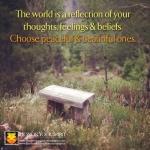 http://honoryourspirit.wordpress.com/2012/07/30/choose-peace-beauty/
